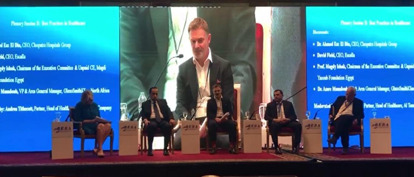 Egypt Conference BEBA