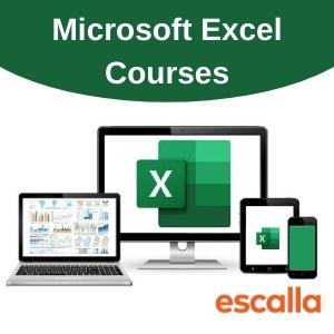 Microsoft Excel Course